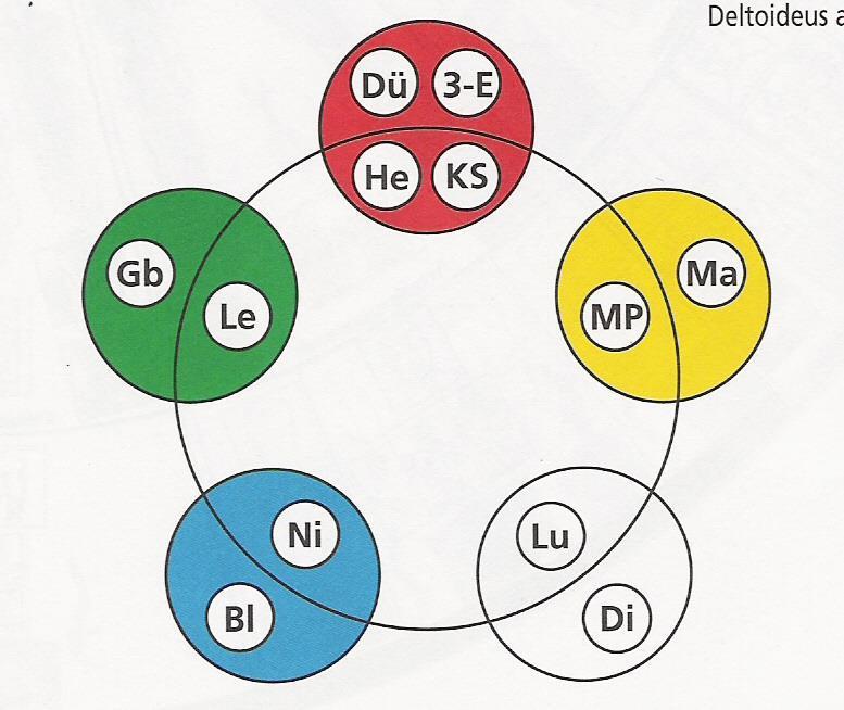 Grafik 5 Elemente